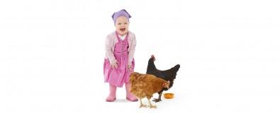 Hühner & Co bei Plant's Corner